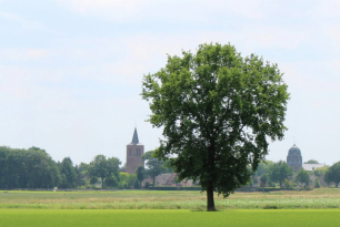 CVJM-Kinderfreizeit Hoogeloon, Niederlande